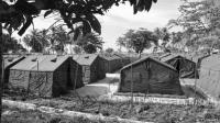 Australia asylum: One killed in violence at PNG camp
